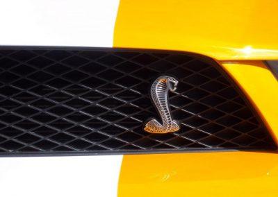 2011 Mustang Tornado | Cobra emblem